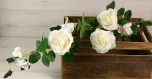 Vetva ruža x5  YX1023