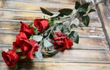 Vetva ruža x6  JX1670